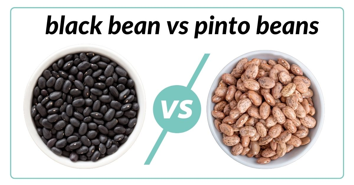 image of black beans and pinto beans